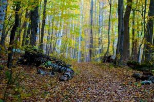 Vermont Fall Adventure